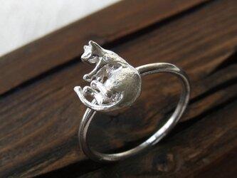 ねるねこリング * Nap Cat Ring llの画像