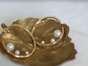 【shizuku】gold pierceの画像