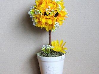 可愛い向日葵のトピアリーの画像