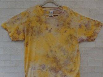 タイダイ染め 黄色とパープルの明るい、まだらしぼりのTシャツの画像