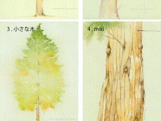 ポストカード・樹木シリーズ 5枚セット 他の組合せも可の画像