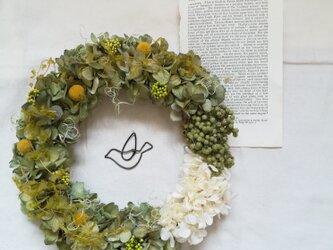 ドライアジサイとつぶつぶのflying bird wreath(リース プリザーブドフラワードライフラワー)の画像