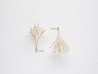 Kasumi sisters | Anne  - Earrings/Pierced earrings [Gold]の画像