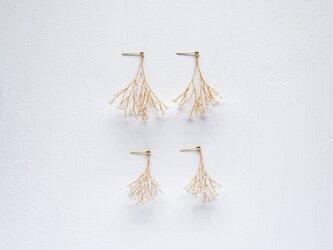 Kasumi sisters | Immorto - Earrings/Pierces [Gold]の画像