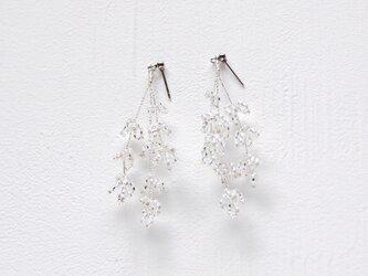 Bailey [Silver] Earrings/Piercesの画像