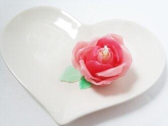 情熱のバラの画像