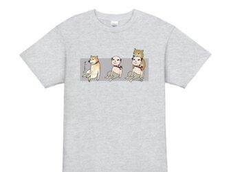 柴犬に噛まれるおじさんのゆるデザインTシャツの画像