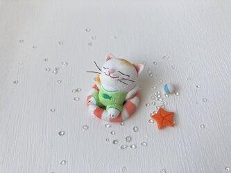 浮き輪猫さん 三毛の画像