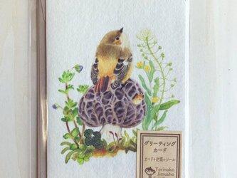 ジョウビタキのグリーティングカードの画像