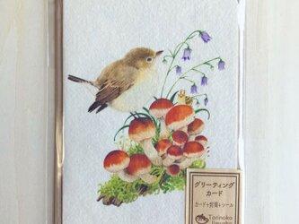 ニシオジロビタキのグリーティングカードの画像