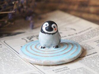 陶器【水面を歩くペンギン】渦巻の画像