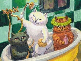 カマノレイコ オリジナル猫ポストカード「おふろの時間」2枚セットの画像
