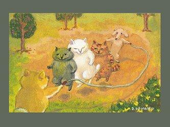 カマノレイコ オリジナル猫ポストカード「大なわとび」2枚セットの画像