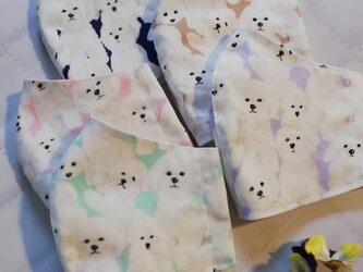ビションフリーゼいっぱいの立体マスク 裏地涼感加工ダブルガーゼ 夏マスク 爽やかな5色 手作りマスク 犬柄の画像