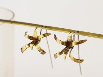 <アウトレット>風蘭のシルバーピアスの画像