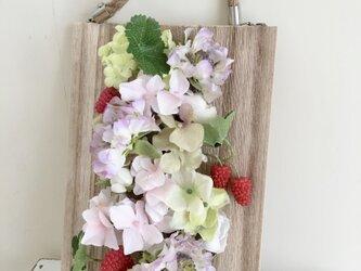 flower garden  夢の画像