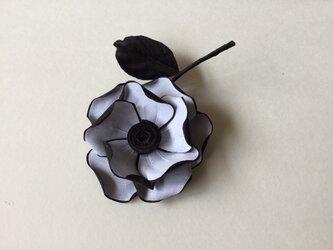黒縁取り薔薇の画像