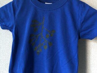 キッズTシャツ(ブラックベリー100)の画像