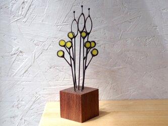 botanical Glass M-3(yellow)の画像