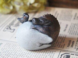陶器【眠り龍/s】卵黒bの画像