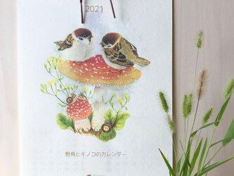 2021 野鳥とキノコのカレンダーの画像