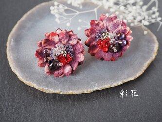 あかの個性のある花/イヤリングの画像