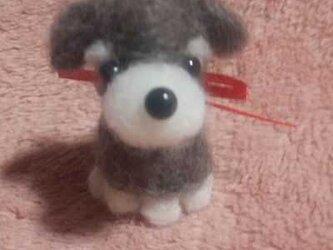 羊毛フェルトハンドメイドシュナウザーの画像