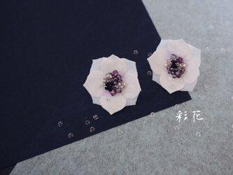 雨上がり 花 澄んだ空/イヤリングの画像