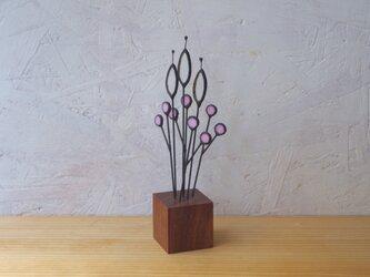 botanical Glass M-2(pink)の画像
