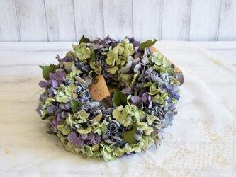 紫陽花の詩リース・パープルの画像