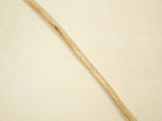 【温泉流木】1本枝のライトな流木棒 流木素材 インテリア素材 木材の画像