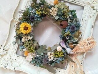 """wreath""""木の実と小鳥とアザミ""""(リース プリザーブドフラワー ドライフラワー アンティーク)の画像"""