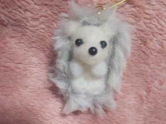 羊毛フェルトハンドメイドハリネズミの画像