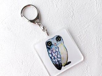 アクリルキーホルダー(フクロウ)の画像