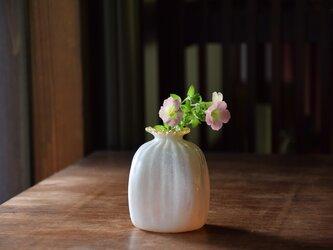 四角い花瓶に雪~アンバー~の画像