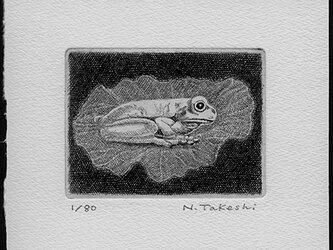 蓮の上の蛙/銅版画 (作品のみ)の画像