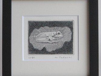 蓮の上の蛙/ 銅版画 (額あり)の画像