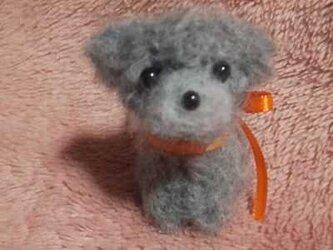 羊毛フェルトハンドメイドトイプードルの画像
