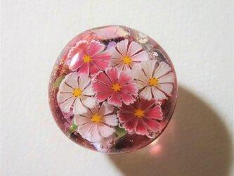 《コスモス》 帯留め ガラス とんぼ玉 着物 浴衣 秋桜の画像