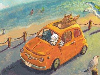 カマノレイコ オリジナル猫ポストカード「セプテンバー」2枚セットの画像