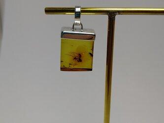 虫入り琥珀 シルバーペンダント no.1  石の大きさ  15 X  7X  高さ18の画像