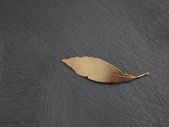 Leaf ブローチの画像