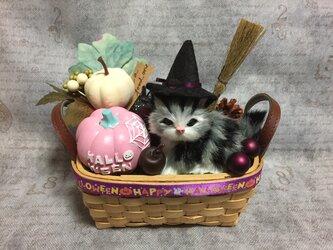 2020猫ちゃんのハロウィンかごアレンジ M パープル系の画像