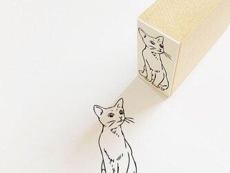 ラバースタンプ ロシアン猫の画像