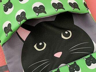 小物入れにもなる猫柄マスク用ポーチ08(グリーン系)の画像