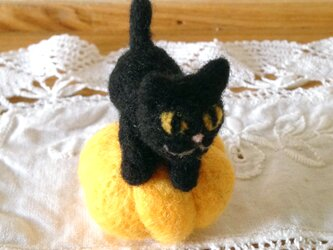 かぼちゃに乗ったハロウィンの黒猫 ミニチュアサイズの画像