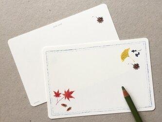 紅葉と木の実のポストカード 5枚組の画像