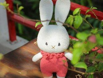 あみぐるみ うさぎちゃん 編みぐるみ プレゼント ハンドメイド 男の子 出産祝い 女の子 お部屋飾り 手編みの画像