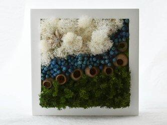 商品番号703「-海辺の雲-」プリザーブドアートフレームの画像