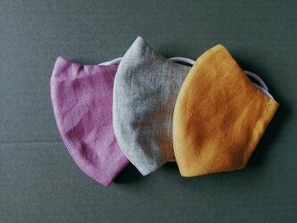 秋色布マスク3枚セットEの画像